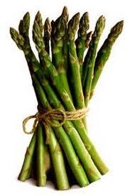 Asparagus, Martha Washington