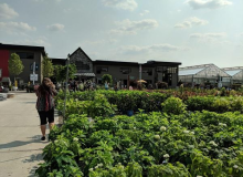Chicago Greenhouse Tours 2018