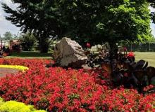 Schedel Gardens 2018