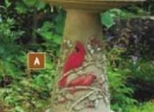 Burley Clay Cardinal Bird Bath