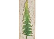 Regal Fern Leaf - Green