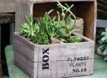 Live Green Cement Crate