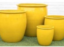 Pottery Paradise Sunrise Yellow