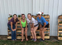 Wood Co Jr Fair Board 2016