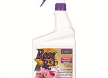Bonide Rose Spray