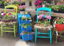 Chair Plantings