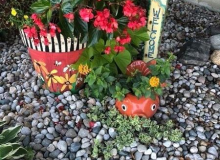 Lana Irick's Studio M and Fishy