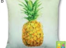 Manual Pineapple