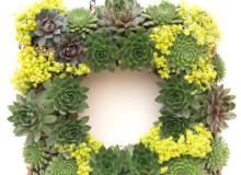 Theuts Square Wreath